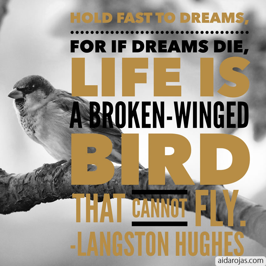 Dreams Die Bird