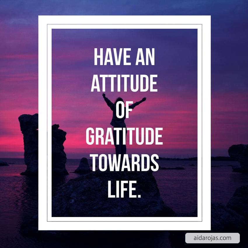 attitude of gratitude-ar